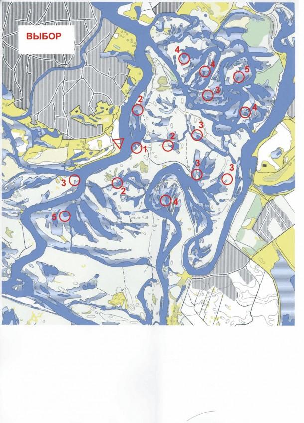 archipelag2009_VIBOR
